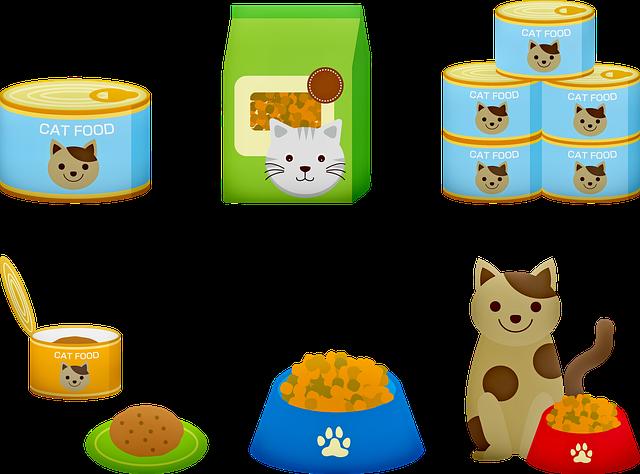 krmení pro kočky